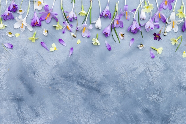 Vertical gray and white background with purple and white spring flowers border and space for text