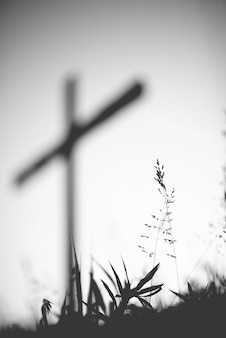 Vertical grayscale shot of a grassy field with a blurred cross