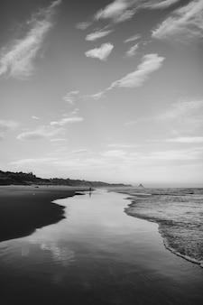 Colpo verticale in scala di grigi di un'onda e la spiaggia di dunedin, nuova zelanda