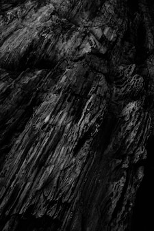 Vertical grey scale shot of the patterns on the rocky cliffs