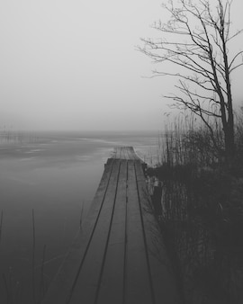 Vertical greyscale shot of a wooden dock near a lake surrounded by bushes