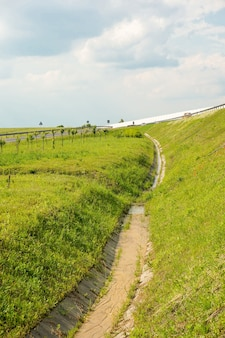 Vertical high angle shot of a green grassy field by a highway