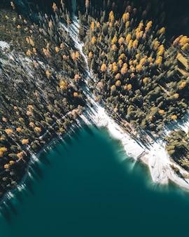 Vista verticale ad alto angolo di un lago, whitr = e riva e foresta