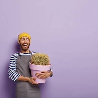 Vertical image of emotional unshaven man looks aside, holds potted indoor plant, cares about cactus, wears yellow hat, striped jumper and apron