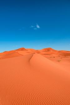 Vertical image of a landscape of orange sand dunes against a blue sky