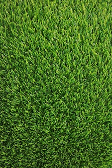Vertical image of lush green grass lawn for background