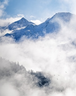 Vertical image of a scenic foggy landscape on alpine mountains