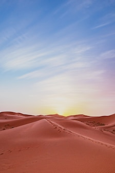 Vertical landscape of sand dunes with animal tracks against a sunset sky