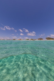 Vertical low angle shot of the ocean in bonaire, caribbean