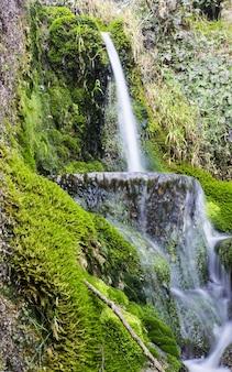 クルカ国立公園の日光の下で緑に囲まれた滝の垂直方向の写真