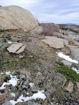 曇り空の下で雪と苔に覆われた岩の垂直方向の写真