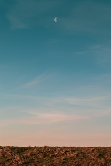 저녁 일몰 동안 필드 위의 달과 푸른 하늘의 세로 사진