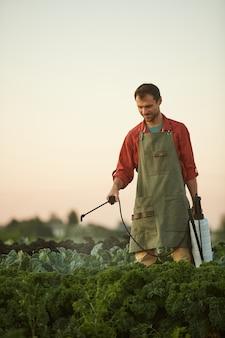 プランテーション、コピースペースに立っている間作物や野菜に水をまく男性労働者の垂直方向の肖像画