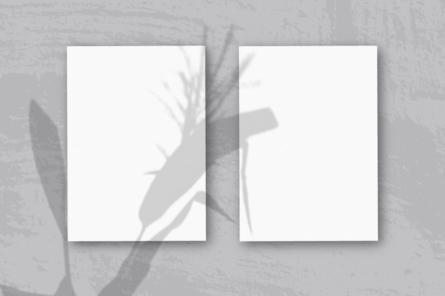 Vertical sheets of textured white paper on soft blue table background mockup with an overlay of plant shadows