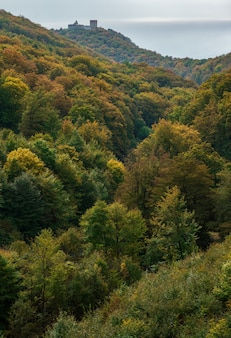 Colpo verticale dell'autunno nella montagna medvednica con il castello medvedgrad