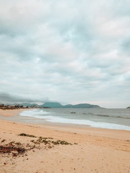Vertical shot of a beach surrounded by the sea under a cloudy sky in rio de janeiro, brazil