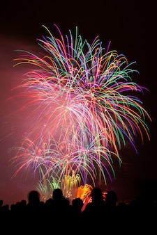 Vertical shot of beautiful colorful fireworks under the dark night sky
