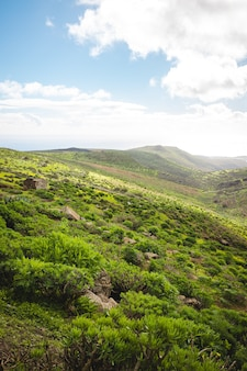 Vertical shot of a beautiful hilly terrain covered with green vegetation