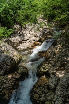 Vertical shot of a beautiful small waterfall in the park of triglav, slovenia in the daytime