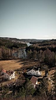 Colpo verticale di una splendida vista di case e alberi vicino al fiume