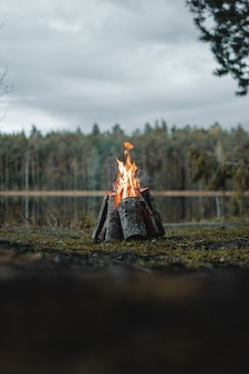 Vertical shot of a campfire surrounded by greenery under a cloudy sky in the morning