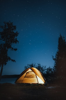 Vertical shot of a camping tent near trees during nighttime