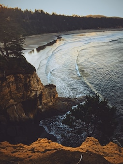 Vertical shot of a cliff near a sea with the forest around it