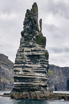 Colpo verticale delle scogliere di moher con i gabbiani su di esso sotto un cielo nuvoloso in irlanda