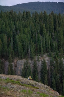 Vertical shot of a couple sitting on a cliff with forested mountains