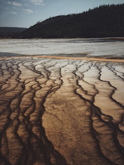 Vertical shot of a dry salt lake with a forested mountain