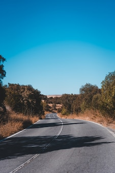 Ripresa verticale di una strada vuota in una giornata di sole