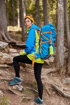 Vertical shot of female tourist walks in mountain forest, looks back, overcomes long distance up hill