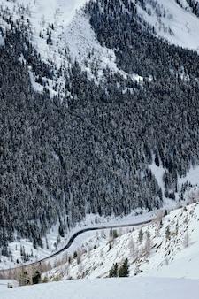 Colpo verticale di una montagna boscosa coperta di neve in col de la lombarde - isola 2000 francia
