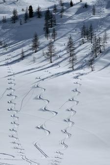 Colpo verticale di una montagna boscosa coperta di neve in col de la lombarde