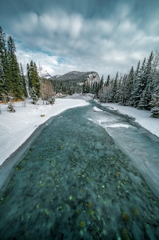 Vertical shot of a frozen turquoise river in an area covered with snow next to a forest