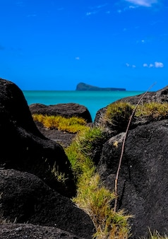 Vertical shot of grass in  middle of rocks near the water with mountain and blue sky
