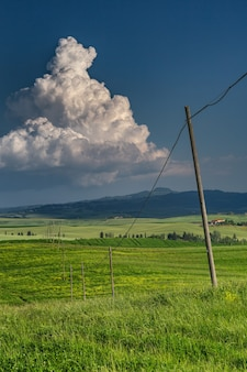 Vertical shot of a green field with electricity poles in val d'orcia tuscany, italy