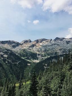 Вертикальный снимок зеленого леса и высокой горы с облачным небом