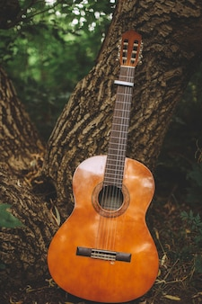 Vertical shot of a guitar leaning on the trunk of a tree in the middle of a forest