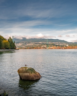 Vertical shot of the lake in the stanley park in vancouver with the view of lions gate bridge