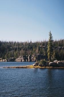 Colpo verticale di un lago circondato da una foresta