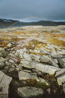 Vertical shot of land with a lot of rock formations and the rainbow in background in finse, norway