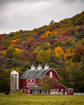 Vertical shot of a large barn near a hill with colorful autumn trees