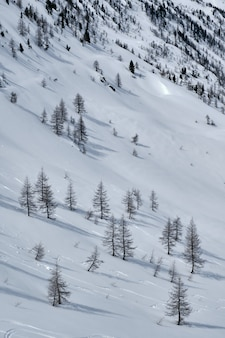 Vertical shot of a mountain covered in snow in col de la lombarde isola 2000 france