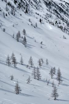 Colpo verticale di una montagna coperta di neve in col de la lombarde isola 2000 francia