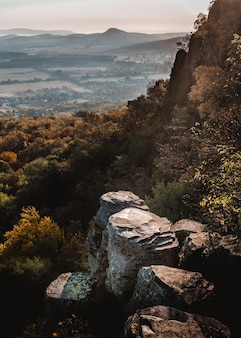 Vertical shot of a mountain in hungary full of trees and vegetation