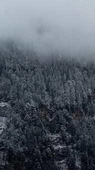 Colpo verticale delle montagne a manali, himachal pradesh, india