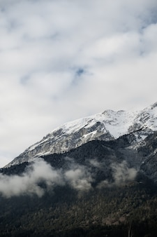 Vertical shot of mountains tops covered with snow and trees under cloudy skies