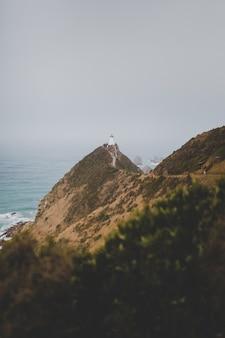 霧の背景を持つニュージーランドの美しいナゲットポイント灯台アフリリの垂直方向のショット