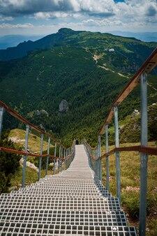 Ceahlau 국립 공원, 루마니아의 녹지로 둘러싸인 산책로의 세로 샷
